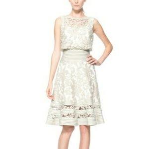 Tadashi Shoji Lace Blouson Embroidered Dress Ivory